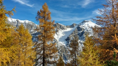 Stubaital, Austria: The colors of alpine fall.